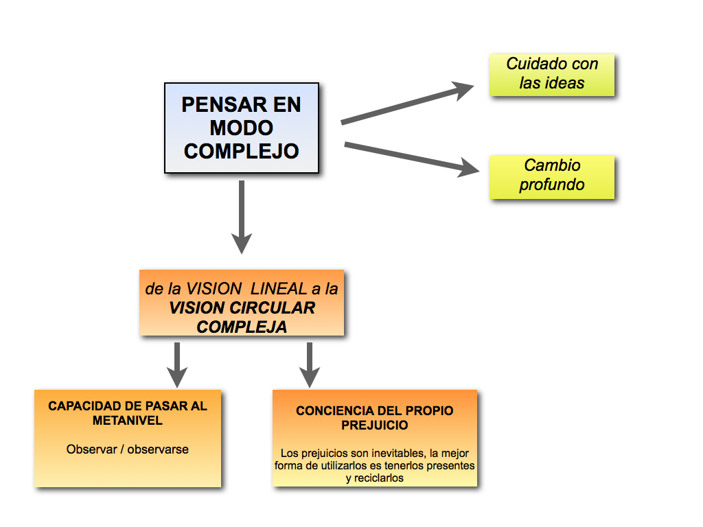 modelo lia.001